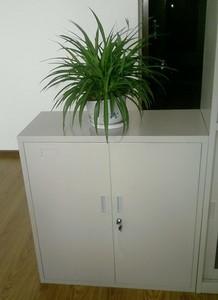 Steel wardorobe cabinet