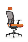 Fann Executive mesh chair with lumbar support