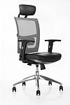 Rex executive chair with lumbar