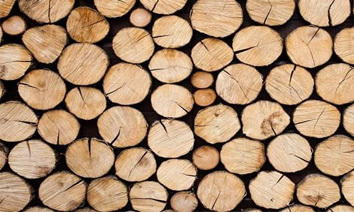 These events will affect the timber import market in China