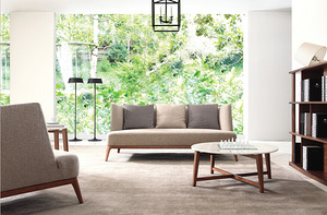Modern combination sofa MS1401