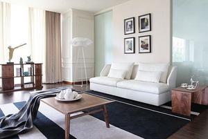 Modern combination sofa MS1309
